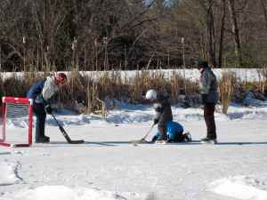 Hockey on the Pond