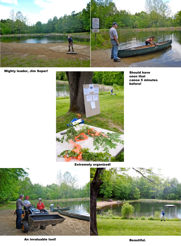Pond clean up 2014